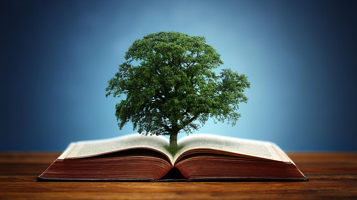 book-tree-content-marketing